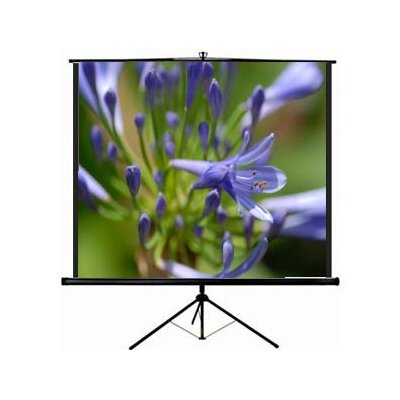 New Matte White Portable Projection Screen Screen Dimensions: 60 H x 80 W