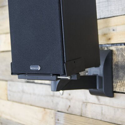 Adjustable Wall Speaker Mount