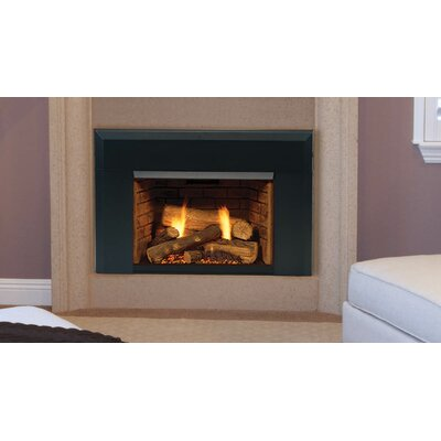 Topaz 30 Insert Direct Vent Gas Fireplace Fuel Type Propane Gas