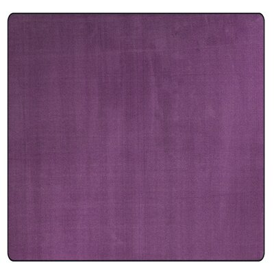 Americolors Pretty Purple Area Rug Rug Size: Square 6
