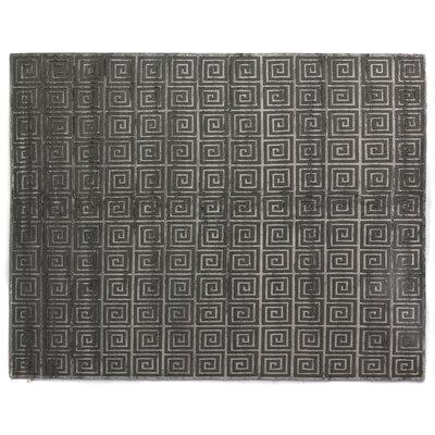 Greco Dark Gray Area Rug Rug Size: 6 x 9