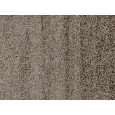 Sumo Shag Beige Area Rug Rug Size: 116 x 146