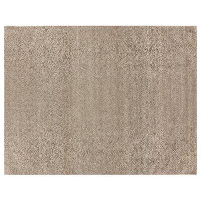 Hand-Woven Beige Area Rug Rug Size: 10 x 14
