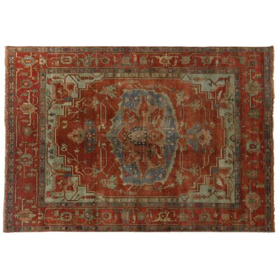 Serapi Knotted Red/Rust Handmade Area Rug