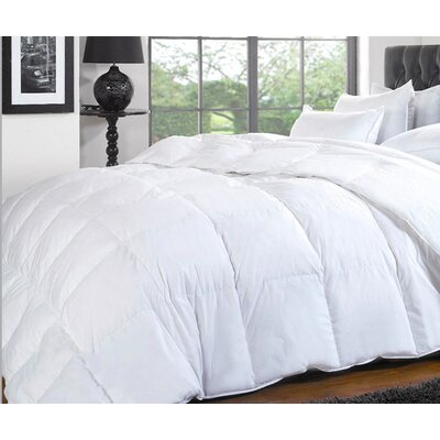 Wool Filled 200 Thread Count Cotton Down Comforter Size: Queen