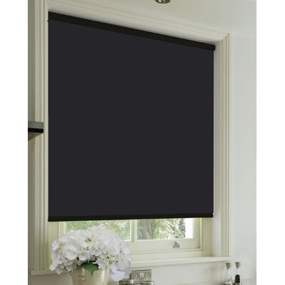 Blackout Black Roll-Up Shade Size: 39 W x 77 L