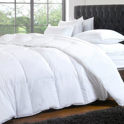 Noil Silk-filled Comforter Size: Queen