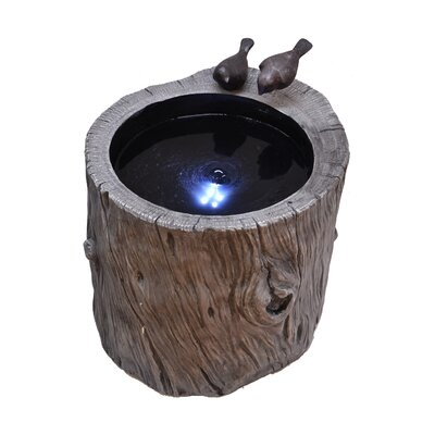 Image of Tree Trunk Fountain