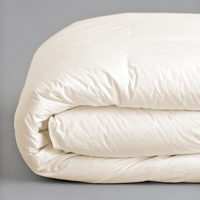 Plush All Season Down Alternative Comforter Color: Ivory, Size: Full / Queen