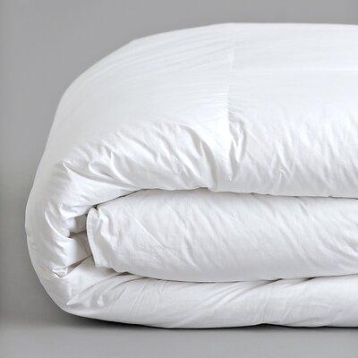 Plush All Season Down Alternative Comforter Color: White, Size: King / California King
