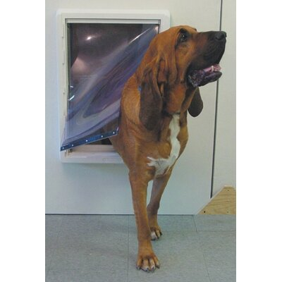 Super Large All Weather Pet Door