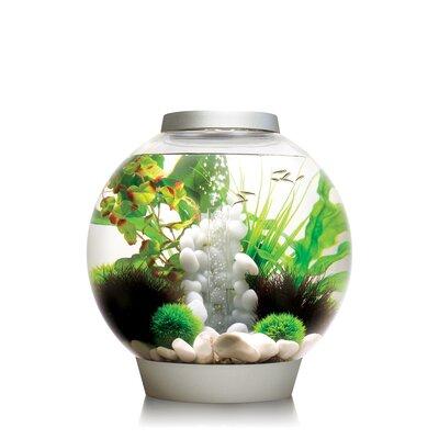 Classic Aquarium Bowl Size: 30 H x 30 W x 30 D, Color: Silver