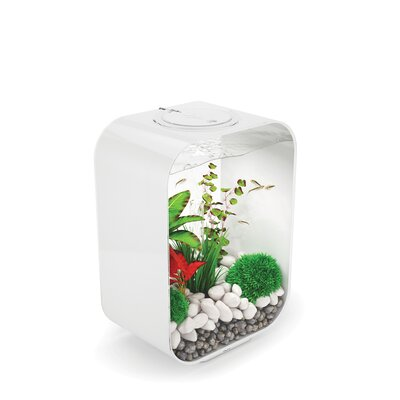 4 Gallon Life Aquarium Tank Color: White