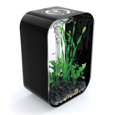 4 Gallon Life Aquarium Tank Color: Black, Size: 15.7 H x 11.4 W x 7.5 D