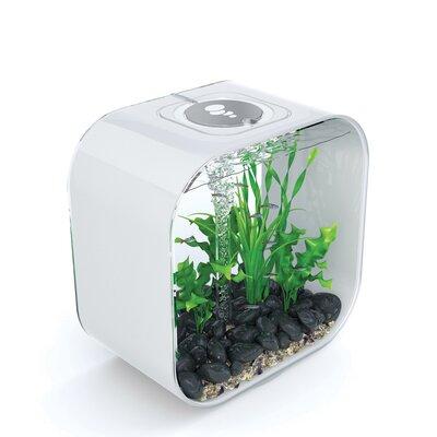 Life Aquarium Tank Size: 30 H x 30 W x 30 D, Color: White