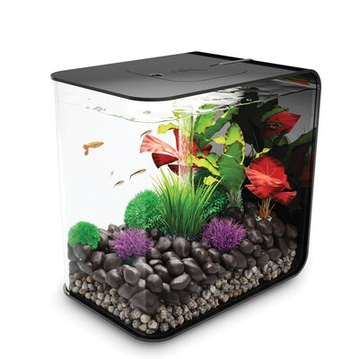 4 Gallon Flow Aquarium Tank Color: Black, Size: 15.4 H x 15 W x 15 D