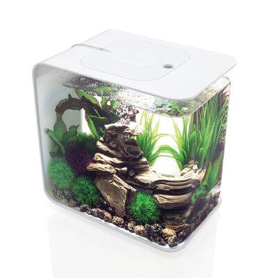 Flow Aquarium Tank Size: 30 H x 30 W x 30 D, Color: White