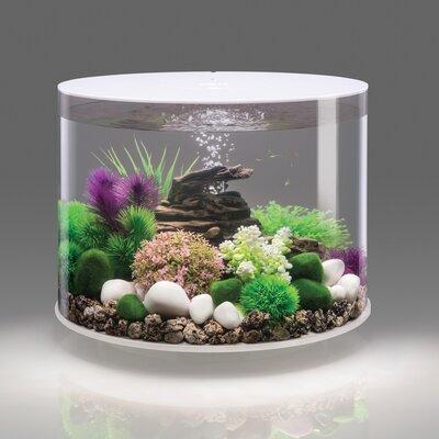 4 Gallon Tube 15 LED Aquarium Tank Color: White, Size: 14.5 H x 16 W x 16 D