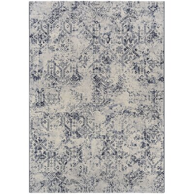 Andover Woven Blue/Gray Area Rug Rug Size: Rectangle 53 x 76