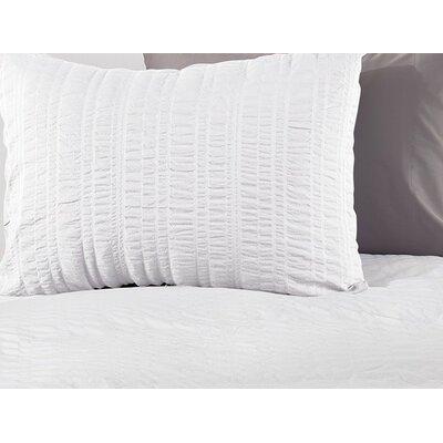Seashore Cotton 2 Piece Duvet Set Color: Alpine White