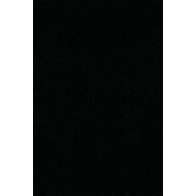 Nan Shag Black Area Rug Rug Size: Rectangle 36 x 56