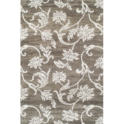 Barrview Brown/Tan Area Rug Rug Size: Rectangle 96 x 132