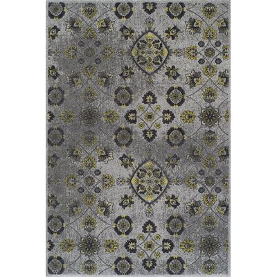 Grand Tour Light Grey/Beige Floral Area Rug Rug Size: 96 x 132