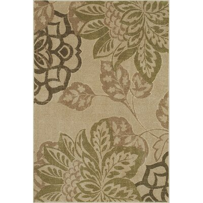 Cicero Putty / Sage Area Rug Rug Size: Rectangle 33 x 5