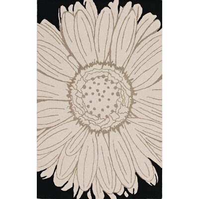 Ambiance Black Area Rug Rug Size: Rectangle 9' x 13'