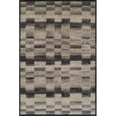 Omega Midnight Area Rug Rug Size: Rectangle 53 x 77