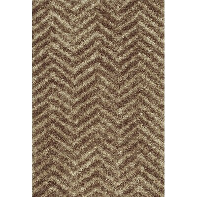 Visions Taupe Area Rug Rug Size: Rectangle 8 x 10