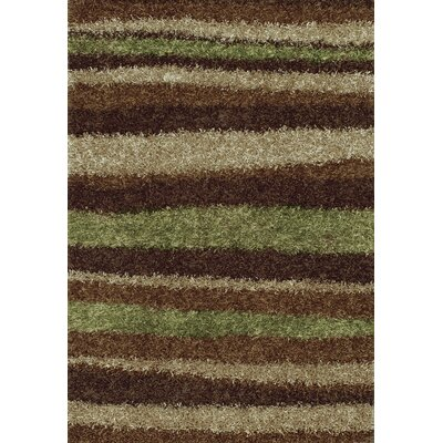 Dominque Mocha Area Rug Rug Size: Rectangle 36 x 56