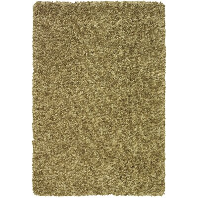 Tyreek Aloe Area Rug Rug Size: Rectangle 36 x 56