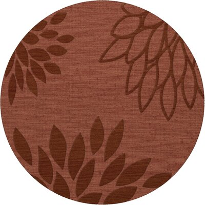 Bao Coral Area Rug Rug Size: Round 4