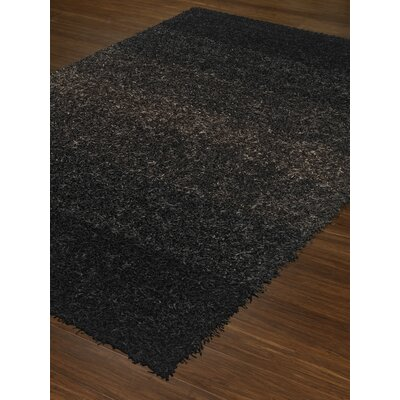 Nasiba Black Area Rug Rug Size: Rectangle 5 x 76