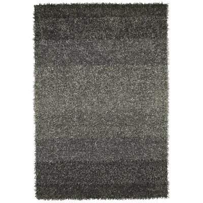 Nasiba Pewter Area Rug Rug Size: Rectangle 5 x 76