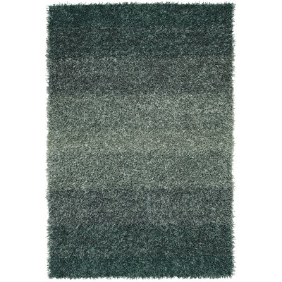 Nasiba Teal Area Rug Rug Size: Rectangle 36 x 56