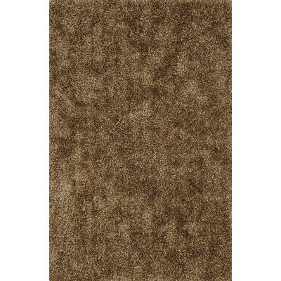 Nan Shag Brown Area Rug Rug Size: 36 x 56
