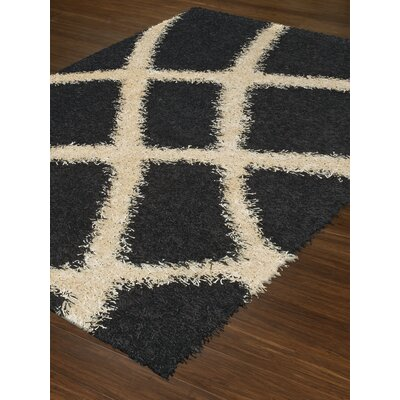 Visions Black Area Rug Rug Size: Rectangle 9 x 13