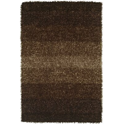 Nasiba Coffee Area Rug Rug Size: 36 x 56
