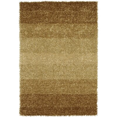 Nasiba Gold Area Rug Rug Size: Rectangle 5 x 76
