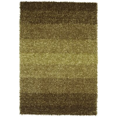 Nasiba Lime Area Rug Rug Size: Rectangle 5 x 76