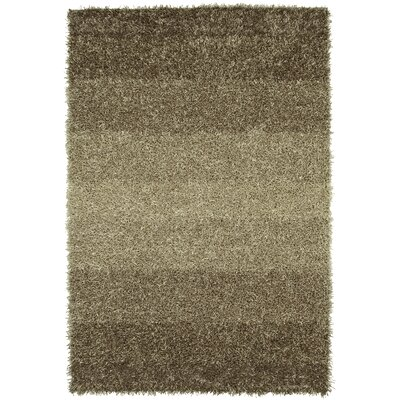 Nasiba Nickel Area Rug Rug Size: 5 x 76