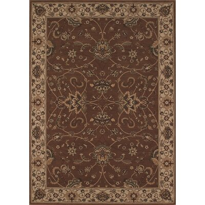 Imperial Chocolate Area Rug Rug Size: Rectangle 97 x 13