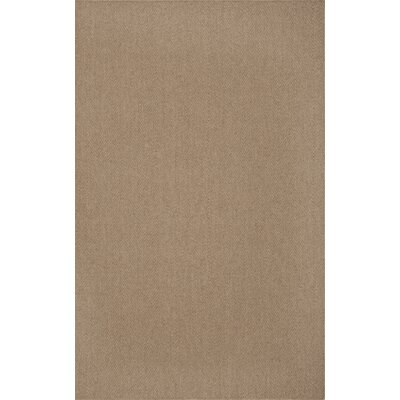 Dionne Ecru Area Rug Rug Size: Rectangle 36 x 56