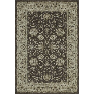 Geneva Dalyn Chocolate Area Rug Rug Size: 53 x 77