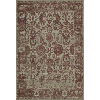 Palma Paprika Area Rug Rug Size: Rectangle 53 x 77