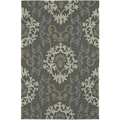 Cabana Hand-Tufted Graphite Indoor/Outdoor Area Rug Rug Size: Rectangle 36 x 56