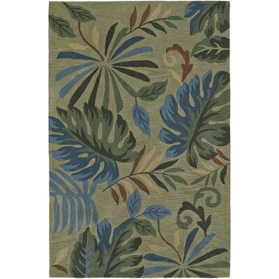 Maui Aloe Area Rug Rug Size: Rectangle 36 x 56