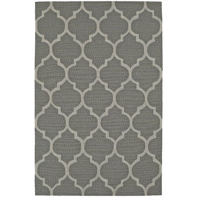 Cabana Hand-Tufted Pewter Indoor/Outdoor Area Rug Rug Size: 36 x 56